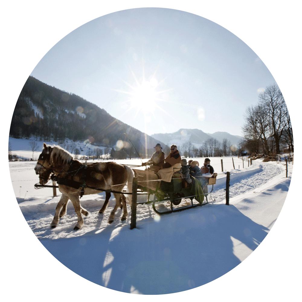 Winteraktivitaet_1